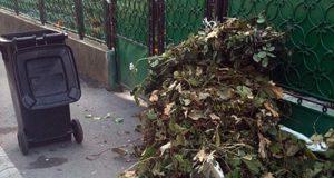 CIBIN: Informare despre colectarea deșeului vegetal de la 1 septembrie