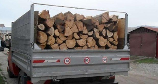 3 bărbaţi reţinuţi de Poliţia Săcele pentru că furau lemn. Cu ce cantitate au fost prinşi?