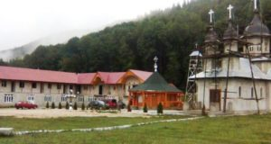 Lemn de foc gratuit pentru Mănăstirea Înălțarea Domnului Brădet și Parohia Ortodoxa Baciu