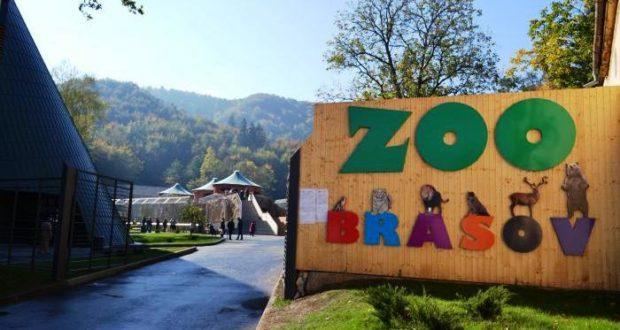 Job de îngrijitor disponibil la Zoo Brașov