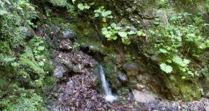 O companie germano-egipteană interesată să investească în producţia de ape minerale naturale la Săcele