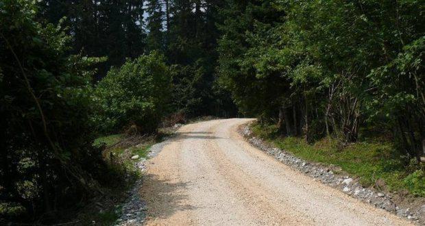 Drum forestier nou la Săcele, între Timișul de Jos și Cascada Tamina. Cât costă și când va fi gata
