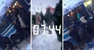 """Ediţia de iarnă: Alte """"Fake News"""" marca Săceleanul.Ro!"""