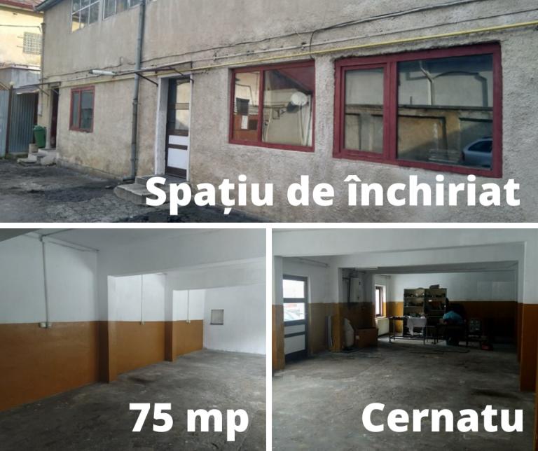 Spațiu de închiriat în Cernatu