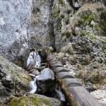 cascada-tamina5